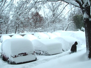 Cars covered with 10 inches of snow