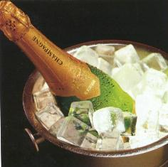 champagne in a bucket
