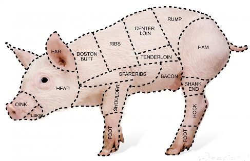 Image of a  pig with the different cuts outlined