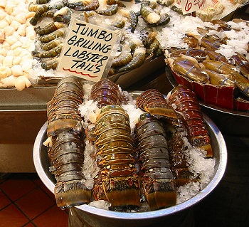 Warm Water Lobster Tail