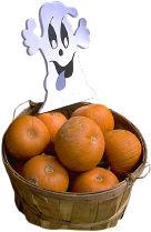 halloween ghost pumpkins